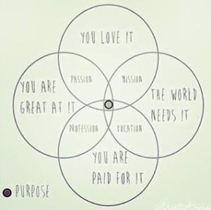 Passion mission vocation purpose